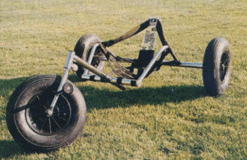 Wolfe Competition Buggy